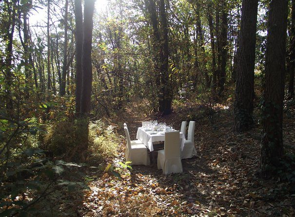 A table in the forest near Varese